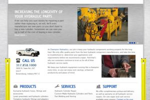 Champion Hydraulics – SEO Website Content